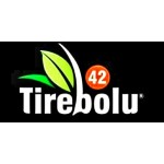 TİREBOLU 42